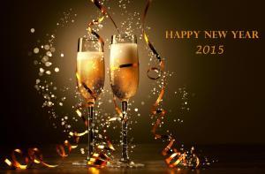 happy_new_year_2015_champagneeeeeeeee